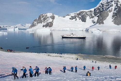 Веб-камеры Антарктика